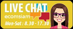 Chat online กับเว็บไซต์สำเร็จรูป Ninenic ติดต่อกับเราทาง chat online